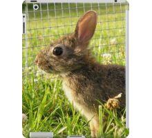 Bunny Rabbit iPad Case/Skin