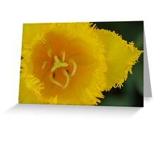 A vision of you. Greeting Card