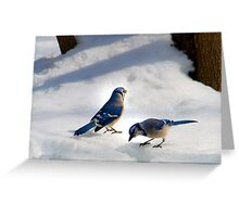 Mr. & Mrs. Jay Greeting Card