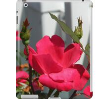 Roses Against the Fence  ^ iPad Case/Skin