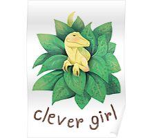 Raptor , clever girl Poster