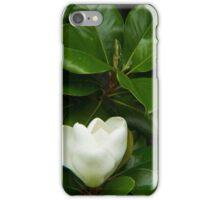 Magnolia 1 iPhone Case/Skin