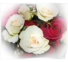 Red And White Roses Poster