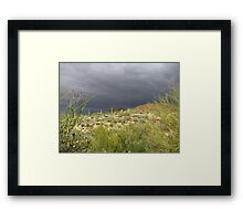 Sonoran Scenery Series ~ 2 ~ Storm over Sonora  Framed Print