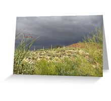 Sonoran Scenery Series ~ 2 ~ Storm over Sonora  Greeting Card