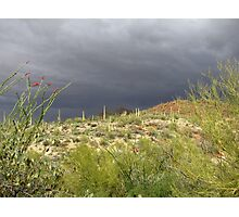 Sonoran Scenery Series ~ 2 ~ Storm over Sonora  Photographic Print