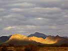 Sonoran Scenery Series ~ 3 ~  Spotlight by Kimberly Chadwick