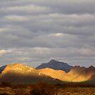 Sonoran Scenery Series ~ 3 ~  Spotlight by Kimberly Chadwick
