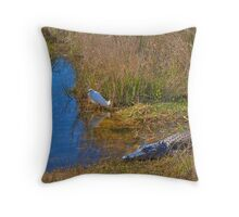 Not Hungry at the Moment Throw Pillow