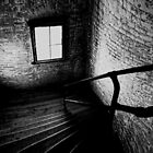 Dark Descent by shutterbug2010