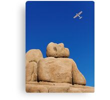 I Wish I Could Fly. Canvas Print