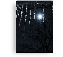 Happy New Year, Blue Moon Canvas Print