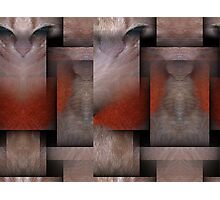 Cat Weaving a Purrfect Life Photographic Print