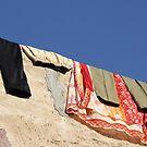 Laundry, Jaiselmir, Rajasthan, India by RIYAZ POCKETWALA