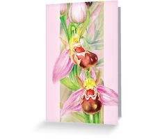 Bee Orchid in the pink Greeting Card