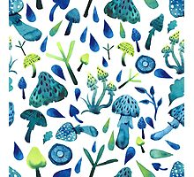 - Mushrooms pattern - Photographic Print