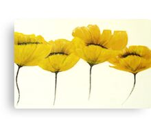 golden flowers Canvas Print