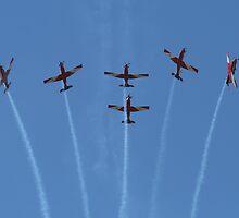 Red Bull Air Race - Entertainment by Stephen Horton