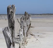 Coorong National Park by Robert Jenner