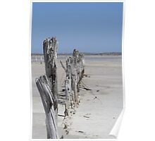 Coorong National Park Poster