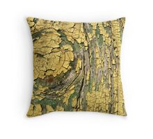 Decayed Painted Wood Throw Pillow