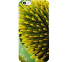 Coneflower iPhone Case/Skin