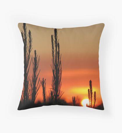 Mount Gambier Summer Sunset Throw Pillow