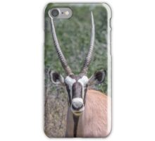 Black & Tan – A Proper Oryx Pose iPhone Case/Skin