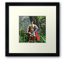 Masters of the Universe Classics - He-Ro Framed Print