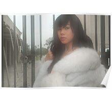 """ Foggy morning fur "" Poster"