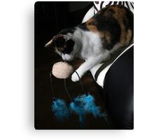Time to play Canvas Print