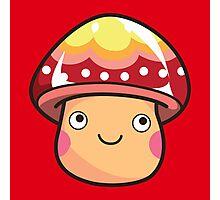 Yupper Mushroom Photographic Print