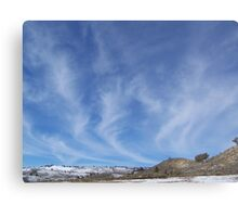 Mare's Tails Metal Print