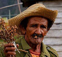 Old Cuban farmer, Vinales, Cuba by buttonpresser