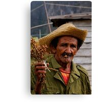 Old Cuban farmer, Vinales, Cuba Canvas Print