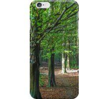 The Beech Woods iPhone Case/Skin