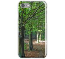 The Beech Woods iPhone Case/Skin