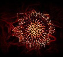 Orange Cute Exotic Flower by MissBeloved