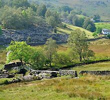 Slaters Bridge Lake District by Nick Jenkins