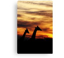 Sunset stroll Canvas Print