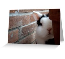 Hello there!  ;-) Greeting Card