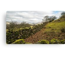 Orrest Head in the Lake District National Park Canvas Print