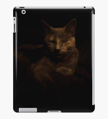 Pixel Relax iPad Case/Skin