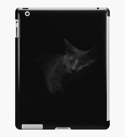 Pixel lazy day iPad Case/Skin