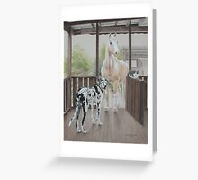 Rex, Shelly and Possum Greeting Card