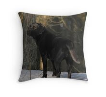 Let the light shine down on me Throw Pillow