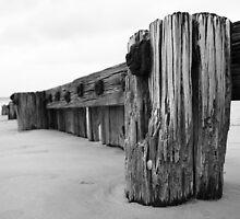 East Beach Vertical by duffpics