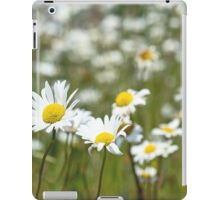 Oxeye Daisies in a field iPad Case/Skin