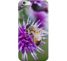 Honey Bee on Thistle Flower iPhone Case/Skin