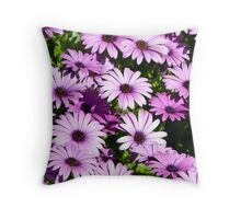 Purple Cape Daisies dancing in the sun. Throw Pillow